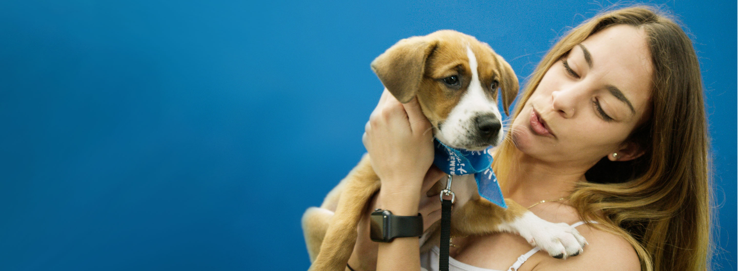 Supporting animal shelters & nonprofits near you | PetSmart
