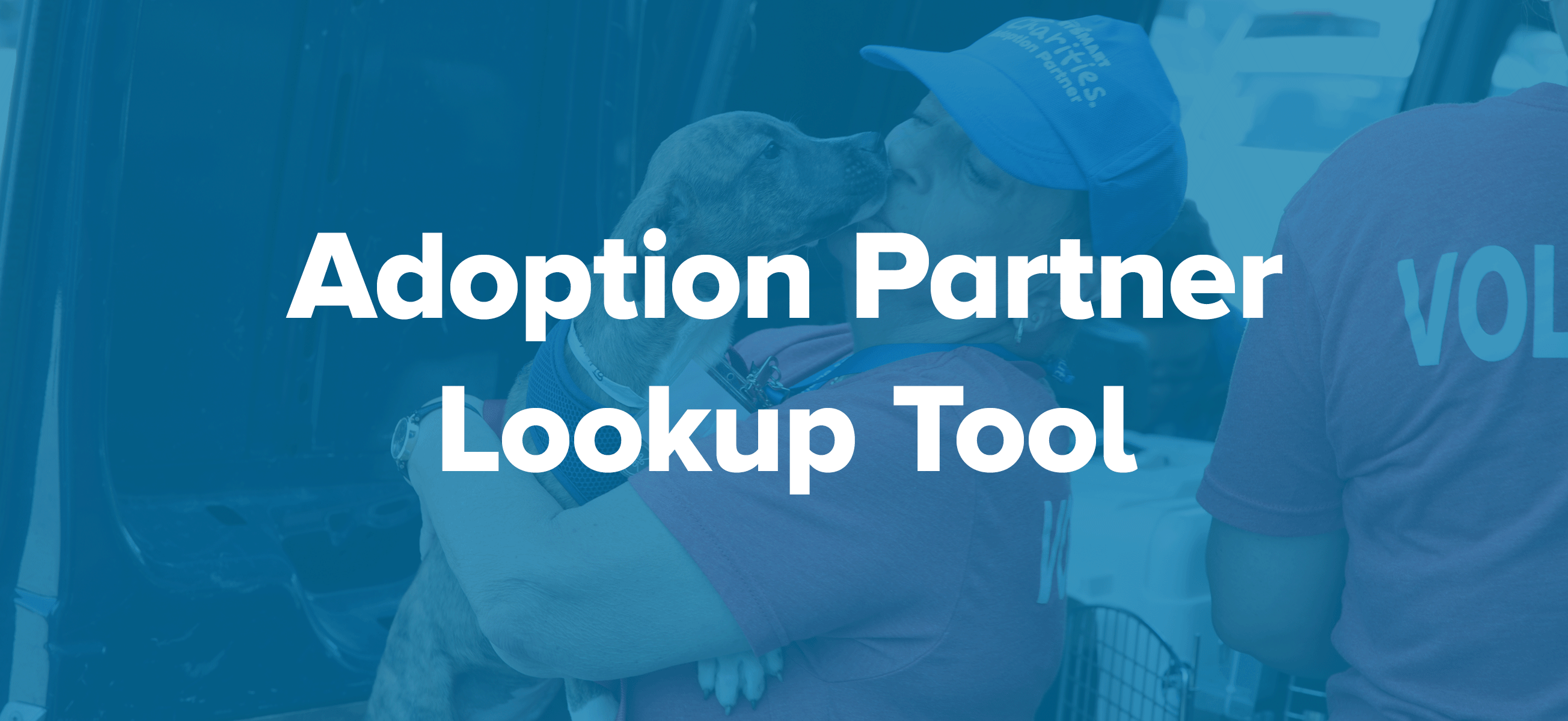 Adoption Partner Lookup Tool