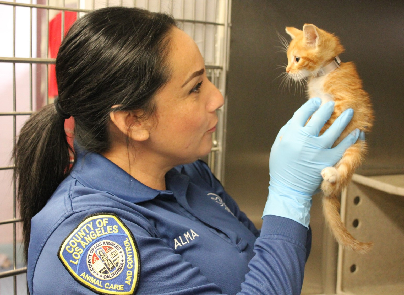 Los Angeles County Animal Care and Control