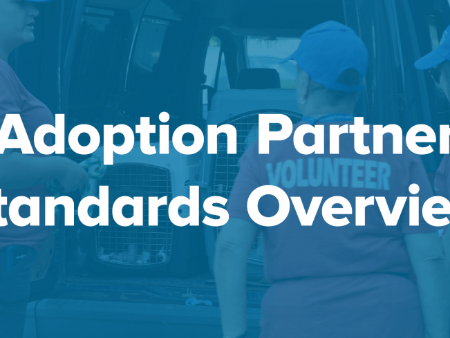 Adoption Partner Standards Overview