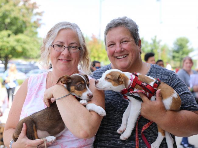 Adopt At National Adoption Weekend Petsmart Charities