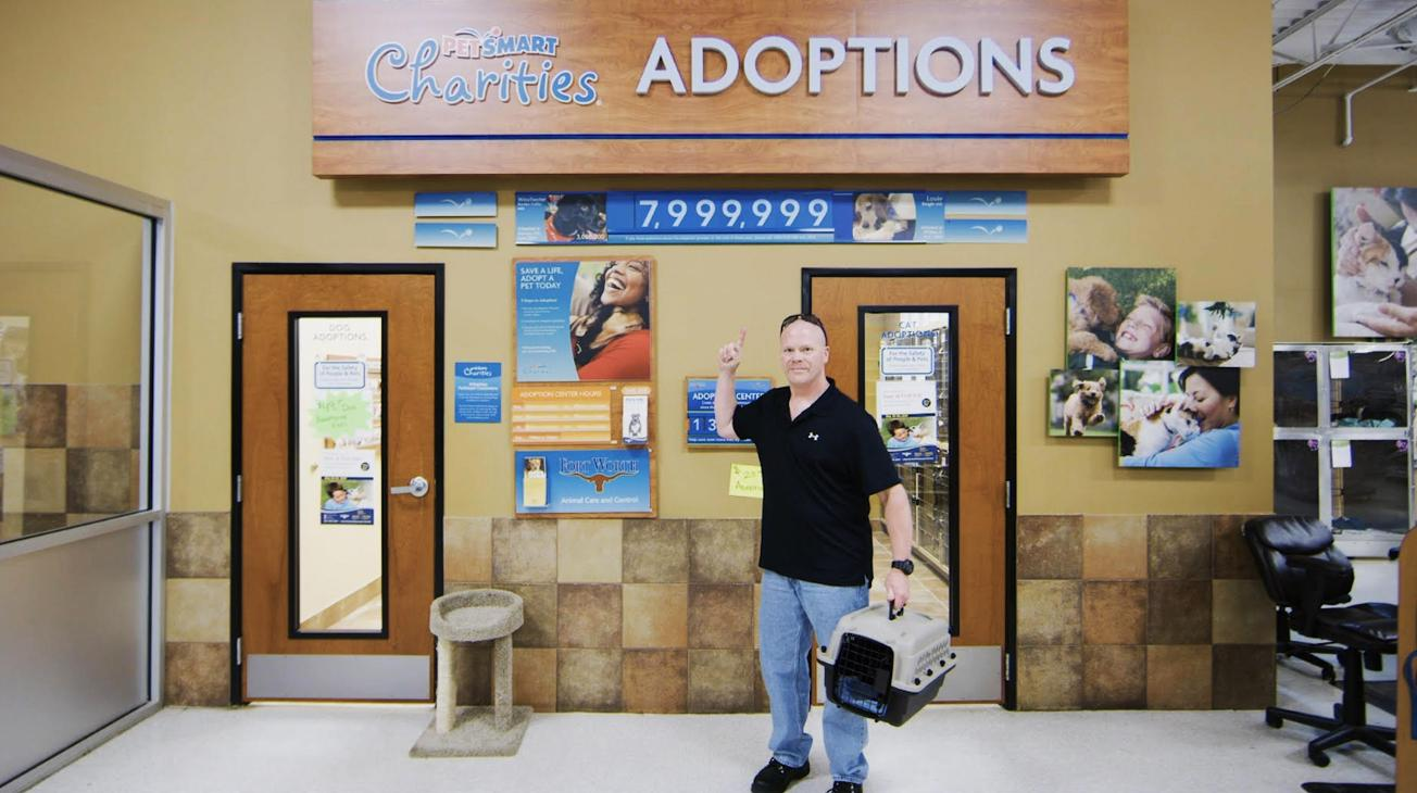 in-store adoptions